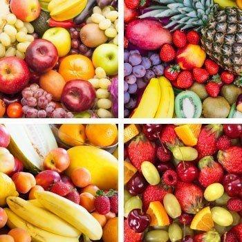 Meyve Besleme Programları