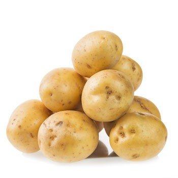 Patates Besleme Programı