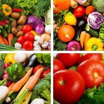 Sebze Besleme Programları