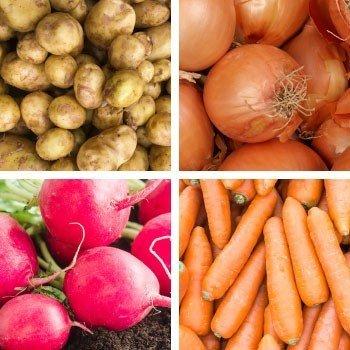 Yumrulu Bitki Besleme Programları