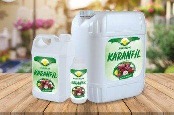 Agronom Karanfil
